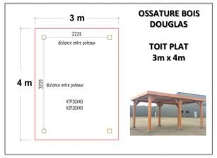 OSSATOIRE BOIS DOUGLAS TOIT PLAT 3m x 4m