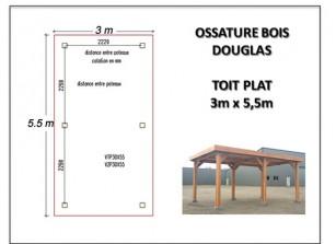 OSSATURE BOIS DOUGLAS TOIT PLAT 3 x 5.5 m