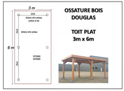 OSSATURE BOIS DOUGLAS TOIT PLAT 3 x 6 m