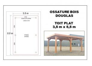 OSSATURE BOIS DOUGLAS TOIT PLAT 3.5 x 5.5 m