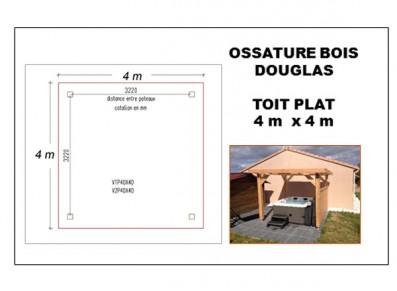 OSSATURE BOIS DOUGLAS TOIT PLAT