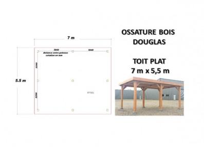 OSSATURE DOUGLAS TOIT PLAT