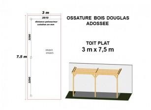 OSSATURE DOUGLAS ADOSSÉE TOIT PLAT