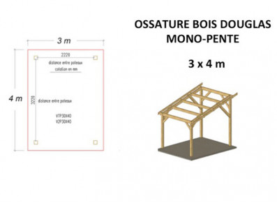OSSATURE DOUGLAS MONO-PENTE 12M2