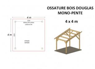 OSSATURE DOUGLAS MONO-PENTE 16M2