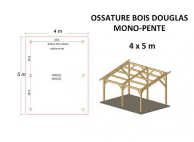 OSSATURE BOIS DOUGLAS MONO-PENTE 20M2