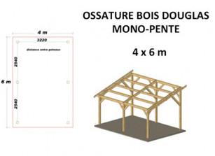 OSSATURE DOUGLAS MONO-PENTE 20M2