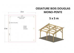 OSSATURE DOUGLAS MONO-PENTE 25M2