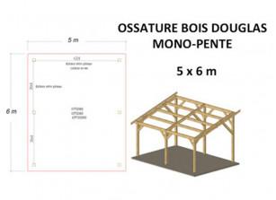 OSSATURE DOUGLAS MONO-PENTE 30M2