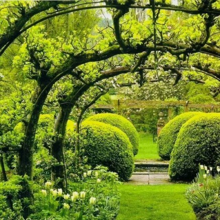 En septembre parez votre jardin pour la rentr e blog for Jardin du pic vert