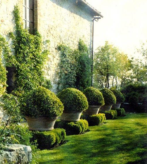 Mon beau gazon roi des jardins blog conseil abri jardin garage carport bons plans - Jardin sans gazon ...