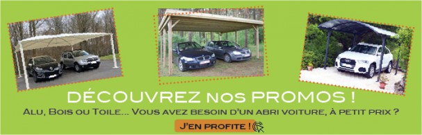 prix abri voiture amazing abri voiture bois douglas x m with prix abri voiture great full size. Black Bedroom Furniture Sets. Home Design Ideas