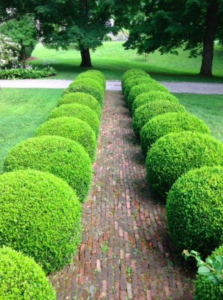 pin tailler ses haies une activit de jardin indispensable on pinterest. Black Bedroom Furniture Sets. Home Design Ideas