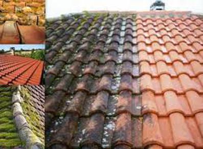 Comment traiter les mousses de toiture ?