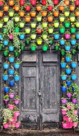 jardin vertical multicolore en pots de fleurs