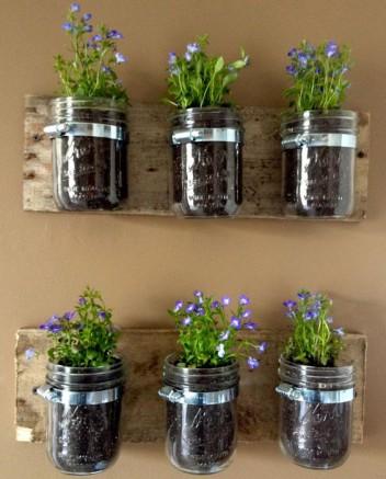 jardin végétal vertical avec des pots en verre