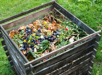 Le compost au jardin, l'atout environnement !