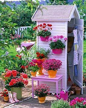 Abri de jardin avec jardinières ornementales