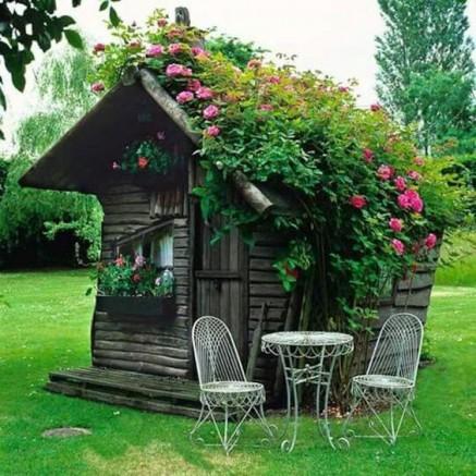 Abri jardin bois avec toiture végétalisée
