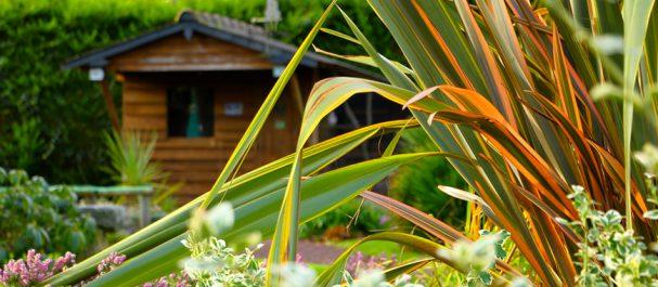 cabane en madriers de bois