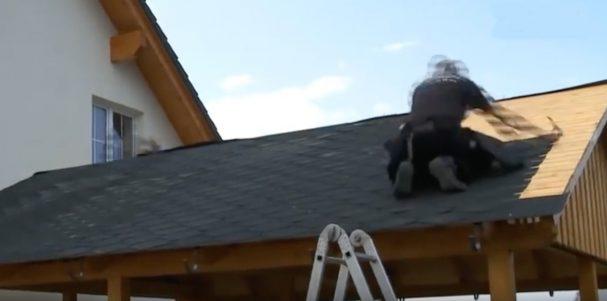 Bardeau Shingle couverture toiture abri bois