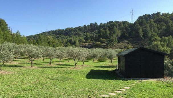 Abri pro en bois pour une exploitation agricole