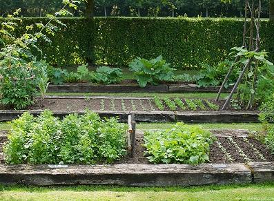 Pour son potager, bien choisir son abri de jardin