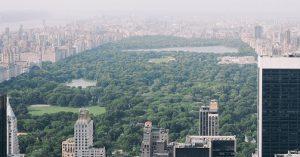 parc urbain abri stockage