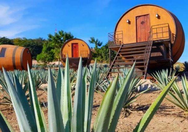 Au Mexique, un hôtel a transformé des barriques de tequila ...