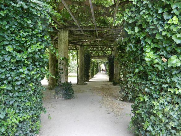 abri tonnelle en bois pour le jardin