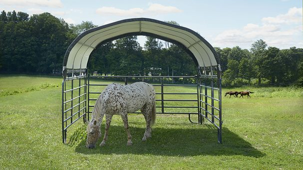prix réduit pour ce tunnel chevaux