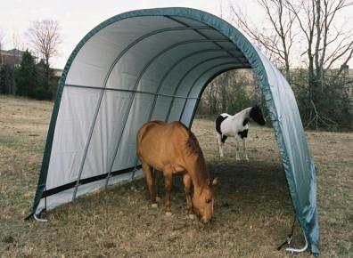 Abri chevaux pas cher, un tunnel comme solution économique !