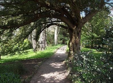 Tonnelle bois : pour les jardins des particuliers, les espaces verts des collectivités !